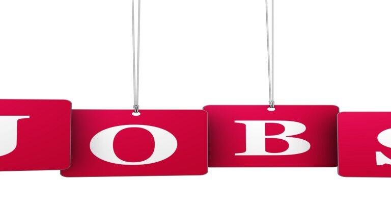 Quels sont les effets de l'augmentation du salaire minimum sur les emplois peu qualifiés ?
